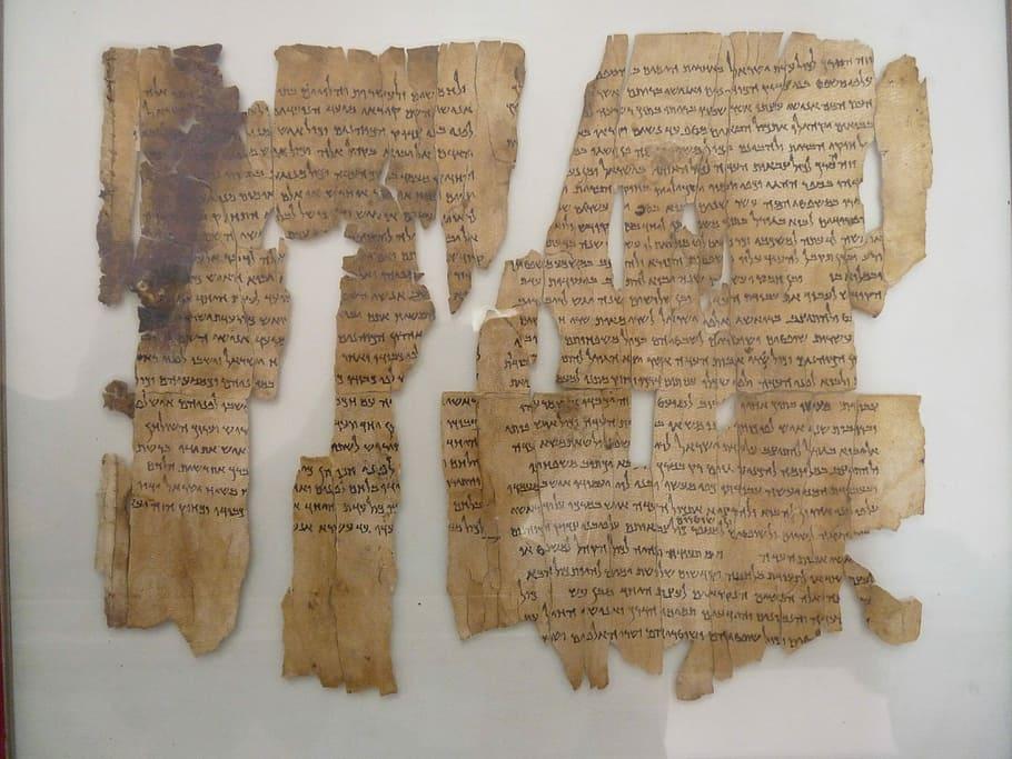 papiro rasgado - origen del papel